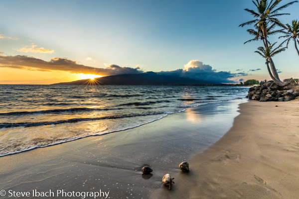 Scenes of Maui (11 of 15)