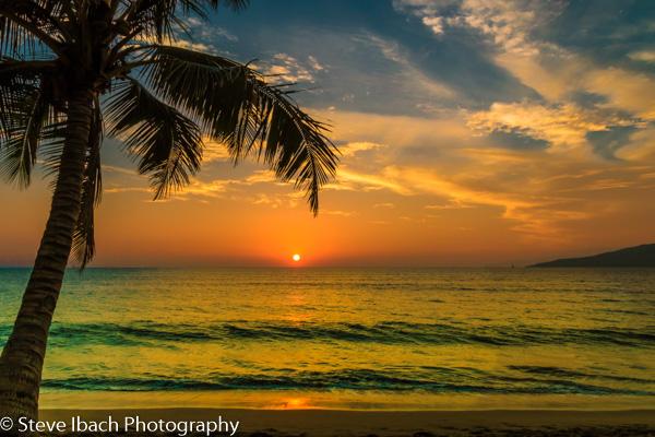 Scenes of Maui (12 of 15)