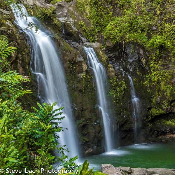 Scenes of Maui (14 of 15)
