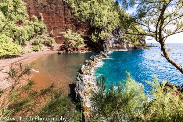 Scenes of Maui (6 of 15)