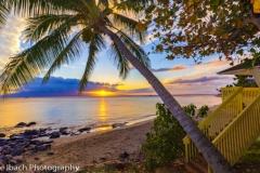 Scenes of Maui (10 of 15)