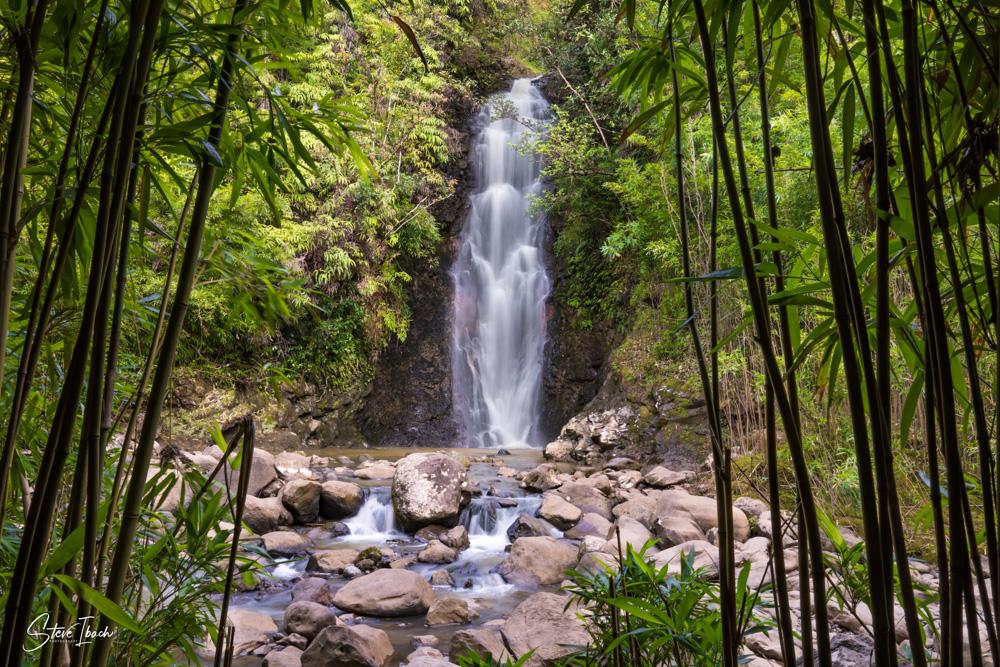 Bamboo Falls Large (1)