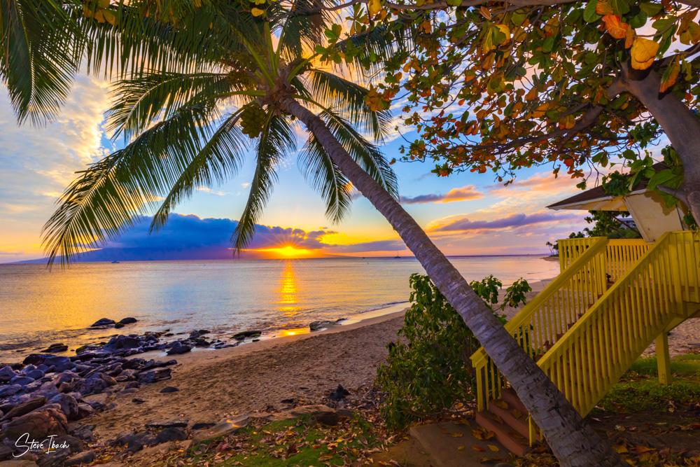 Beach Park Sunset Large